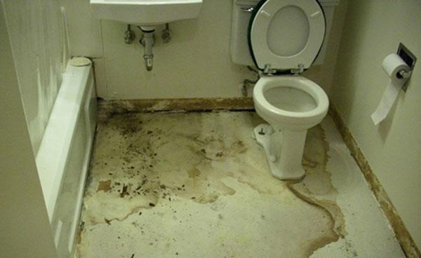 Sàn nhà vệ sinh bị thấm nghiêm trọng